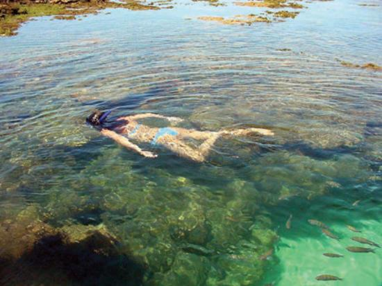 Barra de Catuama Beach: Existe piscinas naturais de água cristalina.