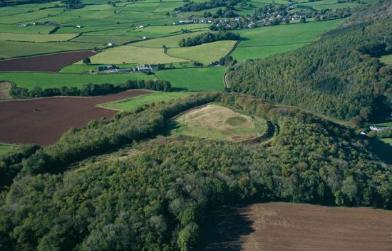 Llanmelin Wood Hillfort