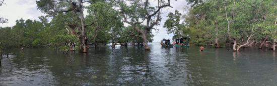 Mamaling Resort Bunaken: The path across the Mangrove to start the diving trips