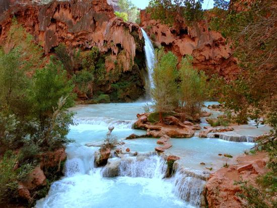 The Wildland Trekking Company: Havasu Falls