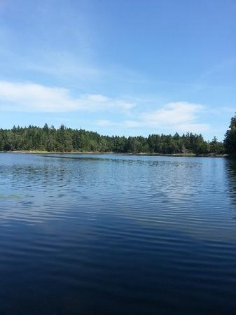 Spider Lake Provincial Park: such a calm lake