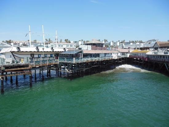 Backside or picture of redondo beach pier redondo for Redondo beach pier fishing