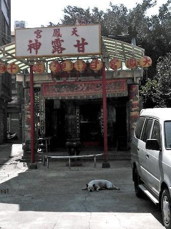 Tianfenggong: 外観