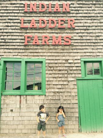 Altamont, estado de Nueva York: Indian Ladder Farms