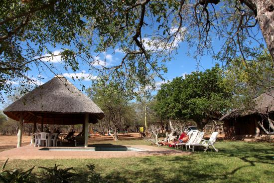 Marula Camp: Next to the swimming pool