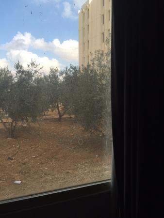 Amman Airport Hotel: грязное окно