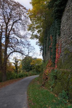 Gussing, Австрия: Herbstliches Farbenspiel an den Burgmauern