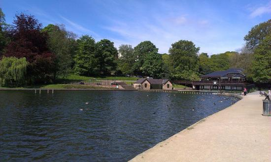 Roundhay Park Cafe Car Park