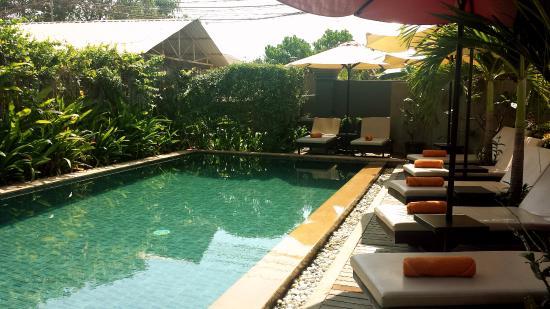 Baby Elephant Boutique Hotel: Pool