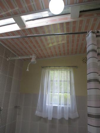 The Ndemi Place: Bathroom (with skylight roofing)