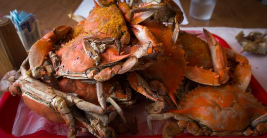 Ridge, MD: Steamed crabs