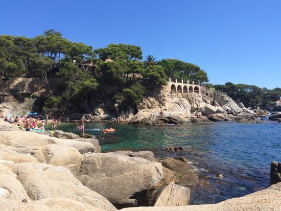 Petite crique photo de platja d 39 aro costa brava tripadvisor - Office de tourisme costa brava ...