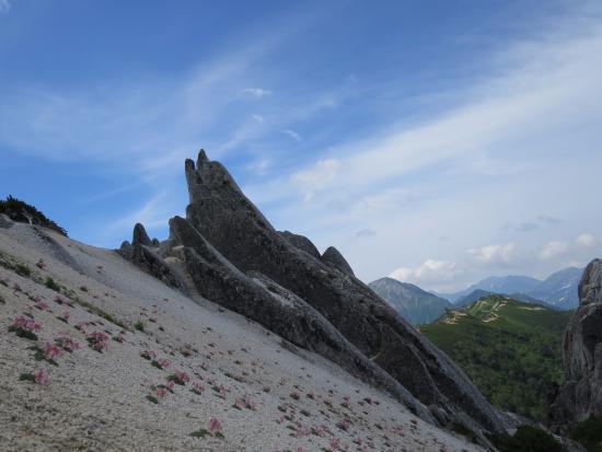 Mt. Tsubakuro: いるか
