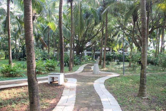Aashyana Lakhanpal: Beautiful lawns