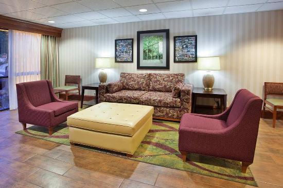 Atenas, GA: Lobby Chairs Hampton Inn Athens Hotel