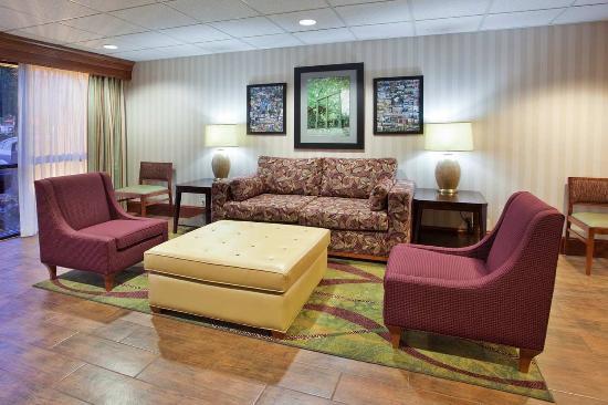 Lobby Chairs Hampton Inn Athens Hotel