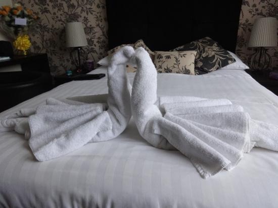 Melbourne - Ardenlea Hotel : Surprise from Jean