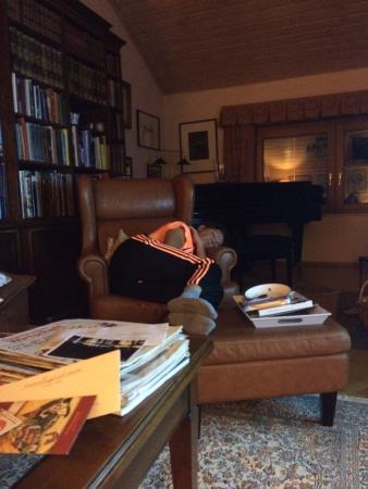 Meridian Manor Bed and Breakfast : Kamin