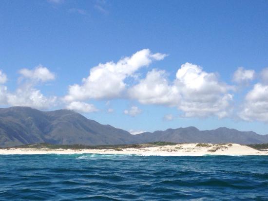 เฮอร์มานัส, แอฟริกาใต้: photo2.jpg