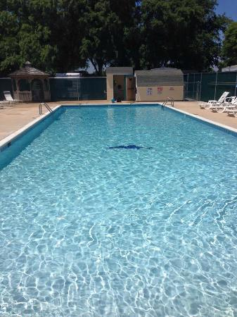 Georgetown, DE: Family Pool