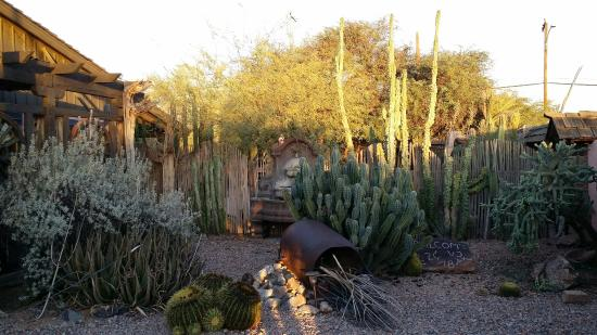 BeDillon`s Restaurant & Cactus Garden : The cactus garden and National Register of Historic Places building are the reason to visit BeDi