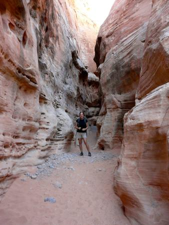 Mouse's Tank: Amazing trails in Valley of Fire