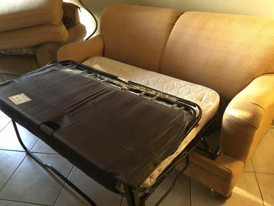 Ratty sofa bed with mold - Picture of Seabonay Beach Resort ...