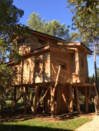 Entr e cottage picture of center parcs domaine le bois aux daims les trois moutiers tripadvisor - Center parc bois aux daims adresse ...
