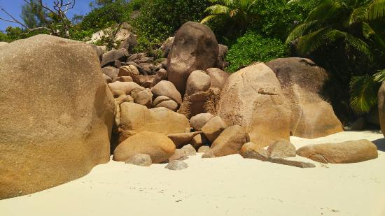 Praslin Island, Seychellerne: 20151111_120535~2_large.jpg
