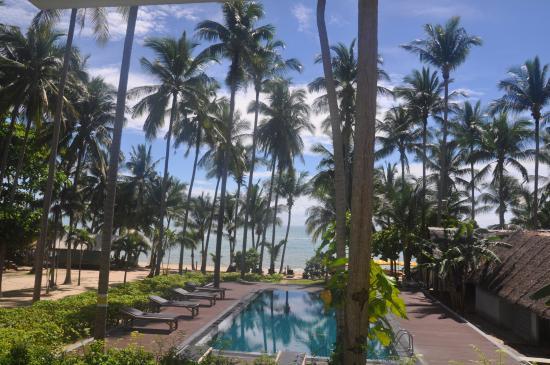 Coconut Beach Resort : Вид из номера