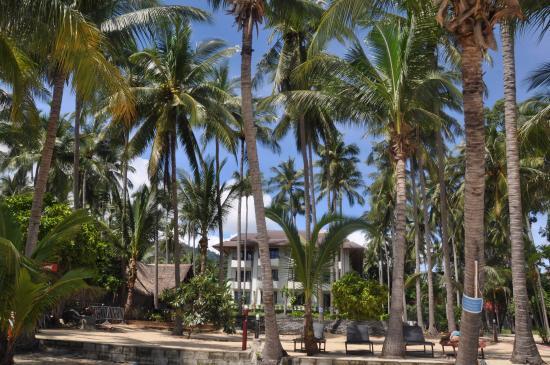 Coconut Beach Resort : отель со стороны пляжа 1
