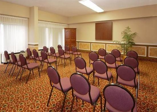 Comfort Inn & Suites Athens: Meeting Room