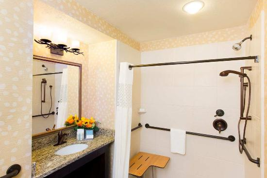 Hampton Inn Jackson Hole : Roll-in Shower