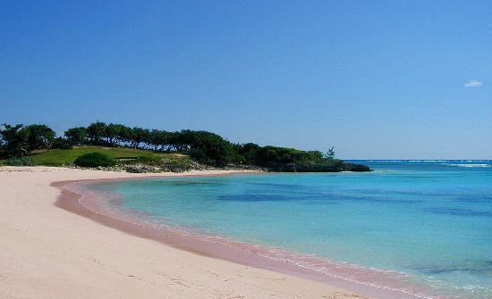 Tropical Dreams Rentals: Beach Nearby