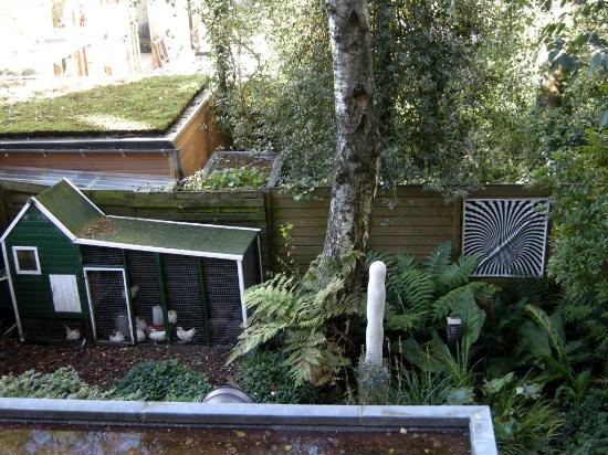 The Collector Bed & Breakfast: Chicken coop in the backyard = fresh eggs
