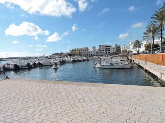 Protur Bonaire Aparthotel: Harbour