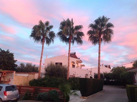 Flor da Laranja: Start of beautiful October sunset