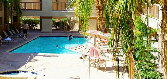 Siegel Suites Select Casa Grande: Sparkling Pool