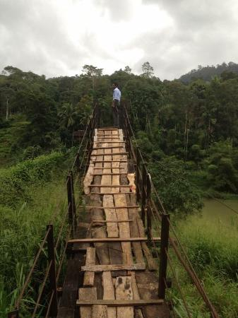 Kothmale Hanging Bridge