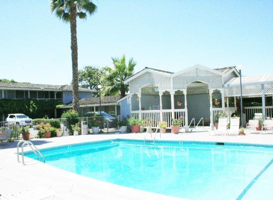 Mariani's Inn: Pool