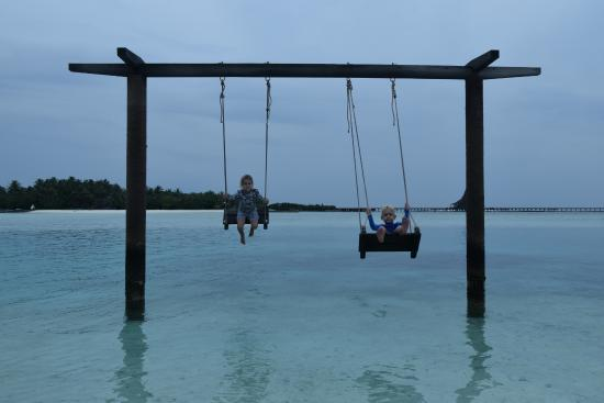 Pool picture of anantara dhigu maldives resort for Swing over water