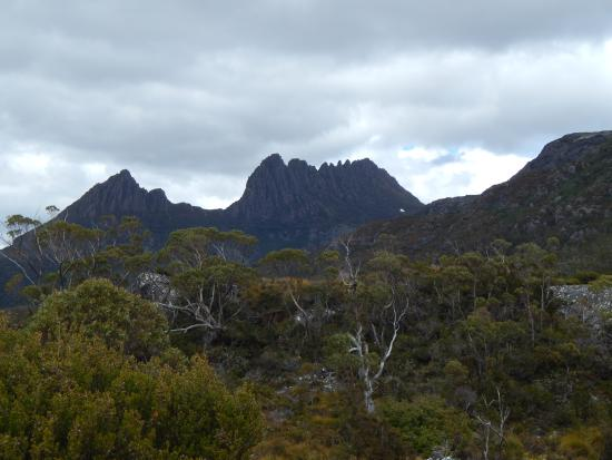 cradle mountain view picture of cradle mountain. Black Bedroom Furniture Sets. Home Design Ideas