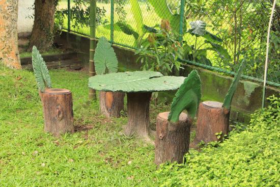 Green View Hotel Katunayake: Прикольный столик