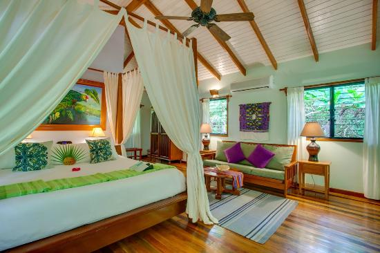 Hamanasi Adventure and Dive Resort: Treehouse Room