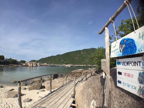 Nangyuan Island Dive Resort : Beach