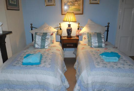 Belmont Guest House: Twin Room at The Belmont