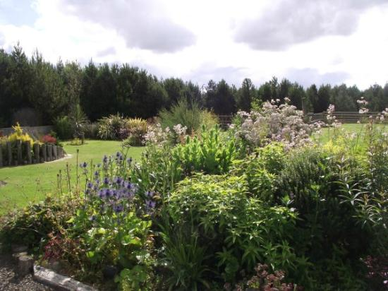 Spittal, UK: Gardens at The Auld Post Office