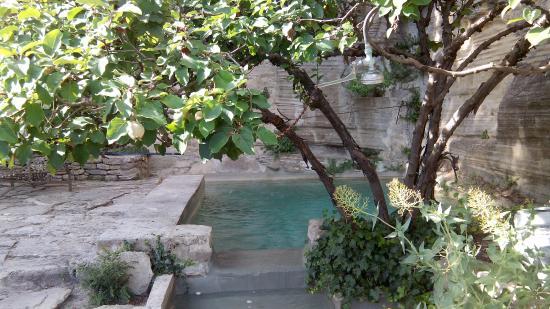 Le Jardin De La Louve Louve05