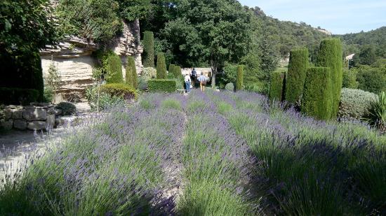 Le Jardin De La Louve Louve02