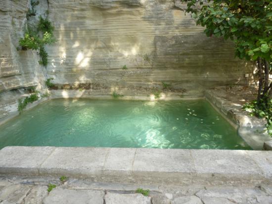 Le Jardin De La Louve Louve03